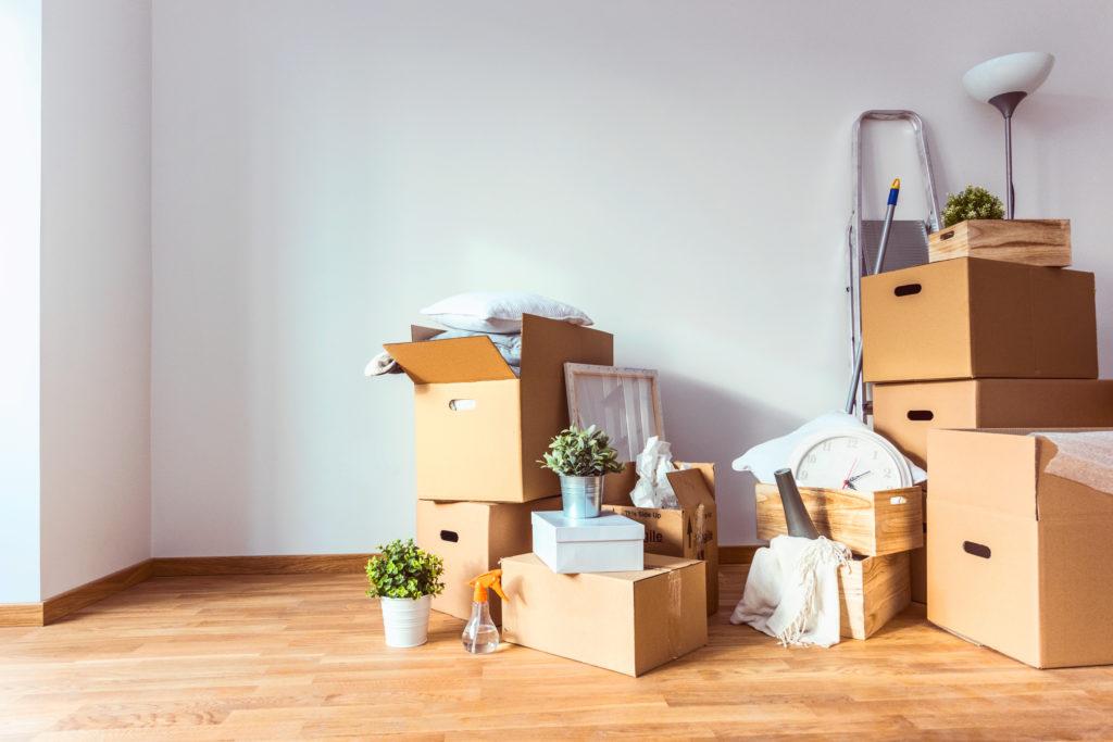 co kupić na nowe mieszkanie