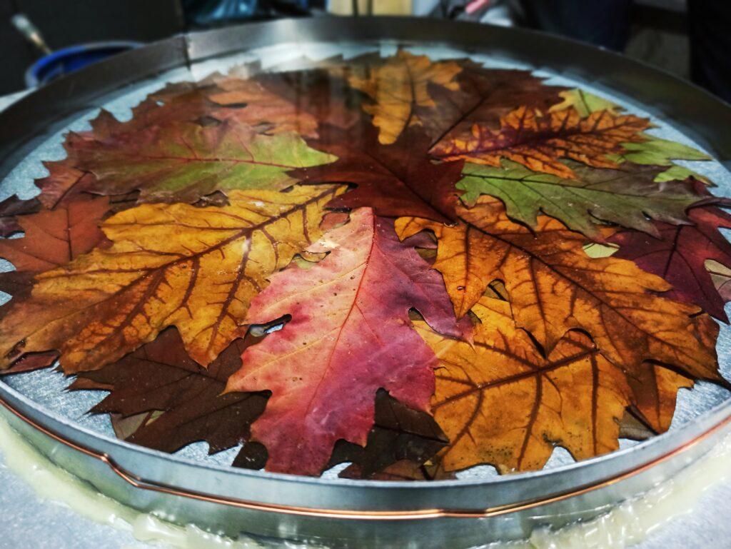 liście zatopione w żywicy